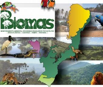 Monitoramento Ambiental dos Biomas Brasileiros